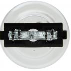 Ampoules (paire) de clignotants claires, Mustang 2005 à 2018